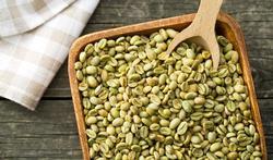 Pourquoi le café vert aide-t-il à maigrir ?