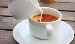 123m-koffie-melk-29-8.jpg