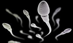 Tabac : quel effet sur le sperme ?