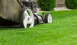Tondre sa pelouse : on peut même en mourir !