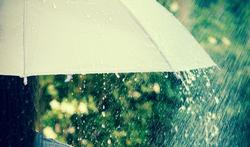 Parapluie : comment le nettoyer et le protéger ?