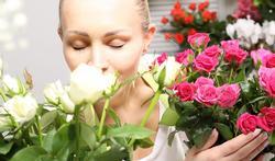 Cancer du sein : le traitement modifie le goût et l'odorat