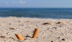 Mégots de cigarettes : l'incroyable pollution des mers et des océans