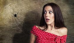 A télécharger : une app contre la peur des araignées