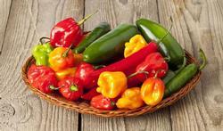 Cœur et cancer : les étonnants bienfaits des piments