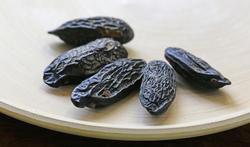 Que faut-il savoir sur la fève tonka ?