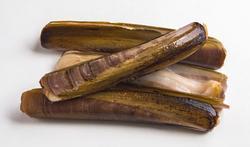 Couteau de mer (solen) : achat, conservation, préparation