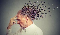 L'ictus amnésique : perdre la mémoire pour quelques heures