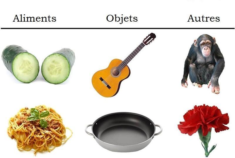 AlimentsCouleurs1.jpg