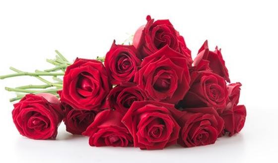 langage des fleurs combien de roses et de quelle couleur passionsant be. Black Bedroom Furniture Sets. Home Design Ideas