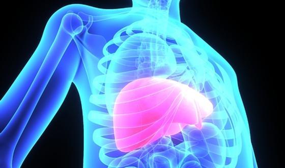 Hépatite C : causes, symptômes et traitements | PassionSanté.be
