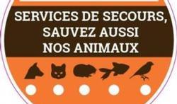 Incendie : l'autocollant pour sauver ses animaux