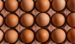 Eieren en gezondheid