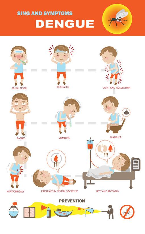 f-123-sympt-tek-denguefever-04-19.png
