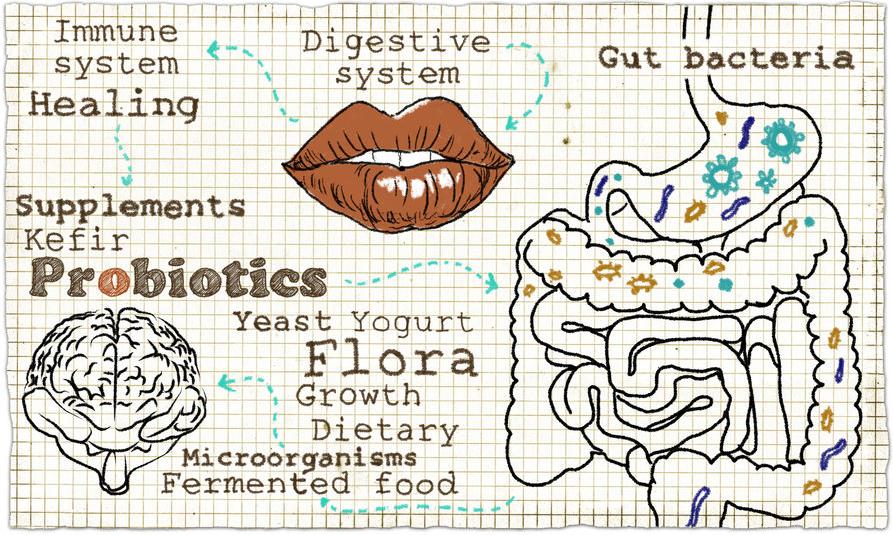 f-123-tek-probiotics-12-18.png