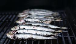 unspl-m-vis-sardine-bbq-6-7-21.jpg