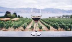 Is een glas rode wijn gezond?