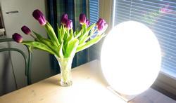 Tips voor lichttherapie bij winterdepressie